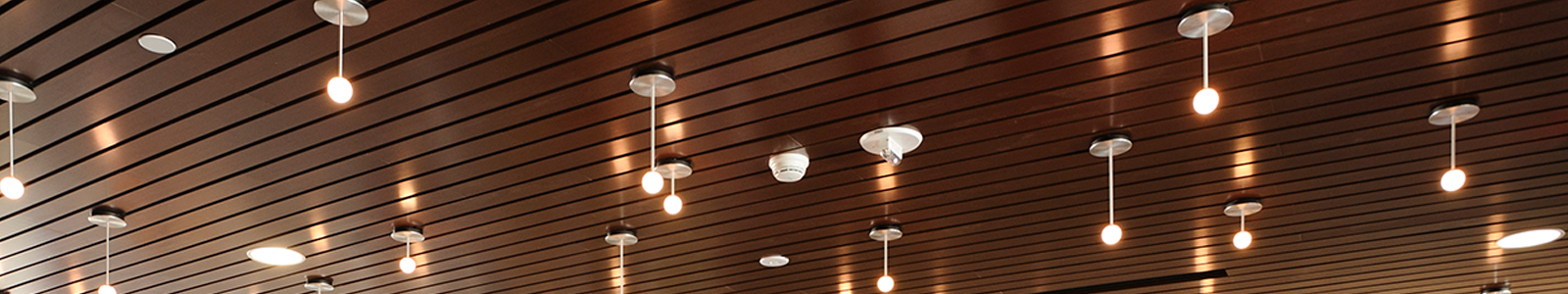 Circular lights hanging down from a wood slated ceiling in the Robin's Nest Café.
